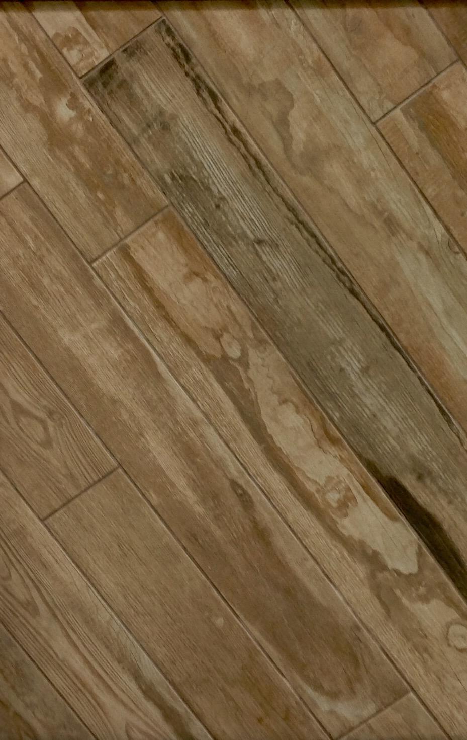 Plank tile flooring more plank tile flooring 1 1 dailygadgetfo Choice Image